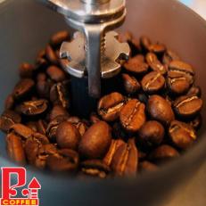 Cà phê hạt Catimo